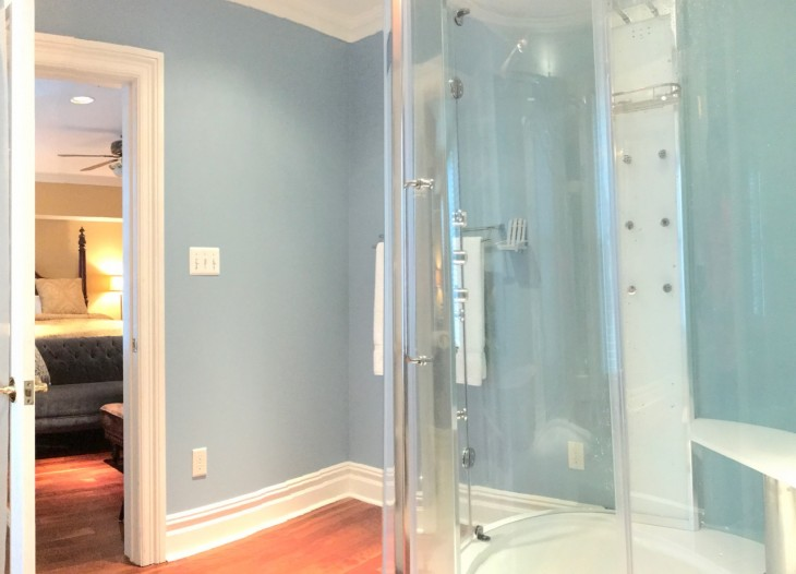 Lago SteamShower 1